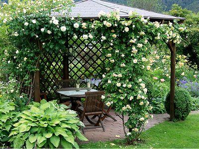 die sch nsten garten bilder aus unserem fotowettbewerb romantische rosenlaube wohnen garten. Black Bedroom Furniture Sets. Home Design Ideas