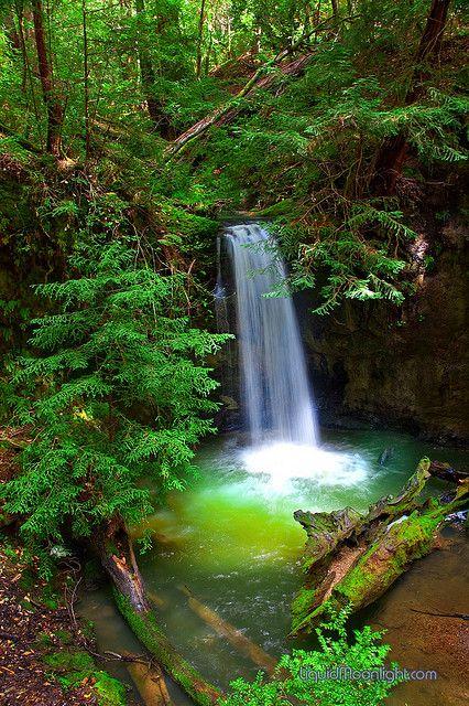 Sempervirens Waterfall - California's Big Basin State Park, USA