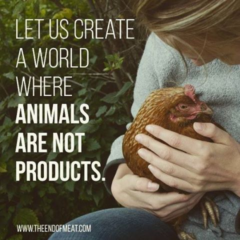 Let us create a world where animals are not products! GO VEGAN