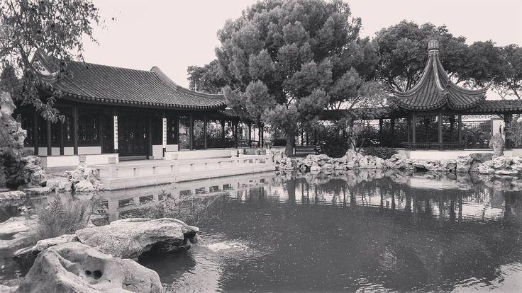 I found a Chinese garden of serenity on my travels. :-) #gowondergirls #letsgowonder #lovetravel #travellovers #destination #seetheworld #travelphoto #travellife #malta_VGB #exploringmalta #permanenttourist #mediterranean #lifewelltravelled #traveladdict #traveldiary #visitmalta #nomad #wanderlust #unlimitedmalta #chinesegarden #gardenofserenity #chinesegardenofserenity