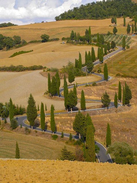The road from Pienza to Montichiello in Tuscany, Italy. The most famous road of Tuscany by stereosimo