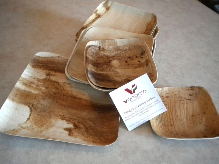 Eco friendly disposables, from VerTerra - EK - Bamboo plates could be interesting. I have access to these types of servicware.
