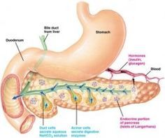 I am living with pancreatitis. In fact I have been living with and overcoming pancreatitis for over 30 years. Are you looking for information...