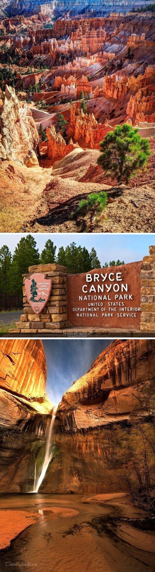 Если любишь красоту природы и её необычные творения – смело планируй посещение национального парка Брайс-Каньон. Он находится в американском штате Юта. Туристы любят бывать здесь на рассвете или на закате. Именно в это время суток цвет скал наиболее насыщенный и яркий.