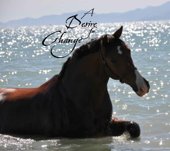 'A desire for change...'  excerpt from Horse Lore