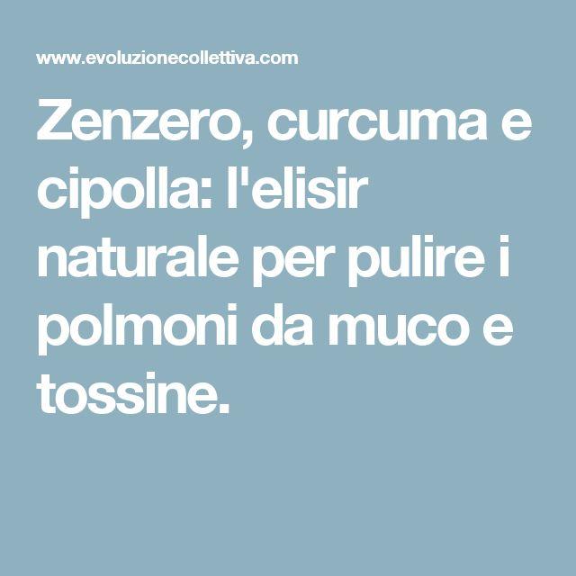 Zenzero, curcuma e cipolla: l'elisir naturale per pulire i polmoni da muco e tossine.