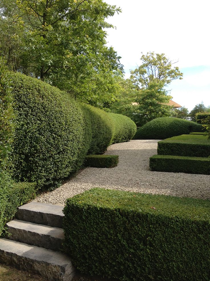 Formal topiary hedges and loose gravel surfacing