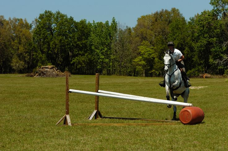 16 Best Images About Diy Horse Jump Ideas And Plans On