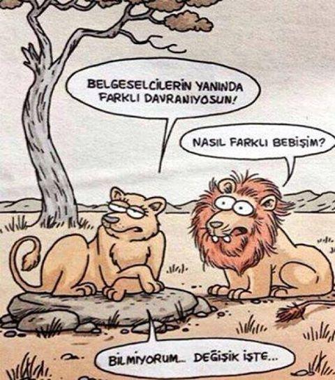Hepsi ve daha fazlası için �� @karikaturdunyasihd #karikatür #love #antalya #alanya #swag #cool #popular #very #beatifullday #new #best #komedi #mizah #komik #acayip #turkey���� http://turkrazzi.com/ipost/1518579965850744138/?code=BUTFG7jjvVK