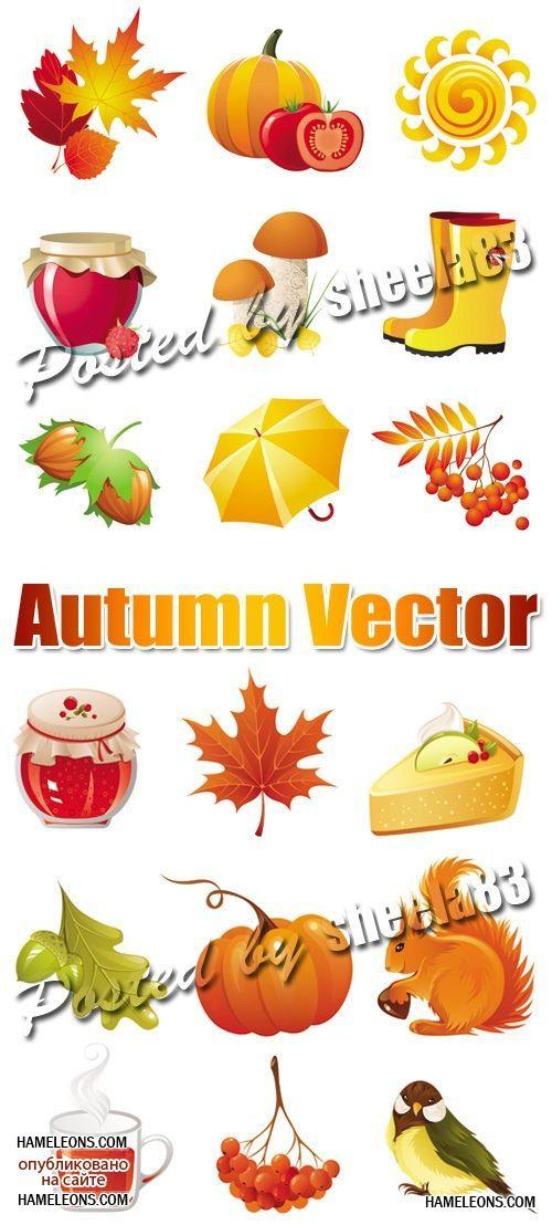 Осенний урожай - векторные изображения   Autumn Vector