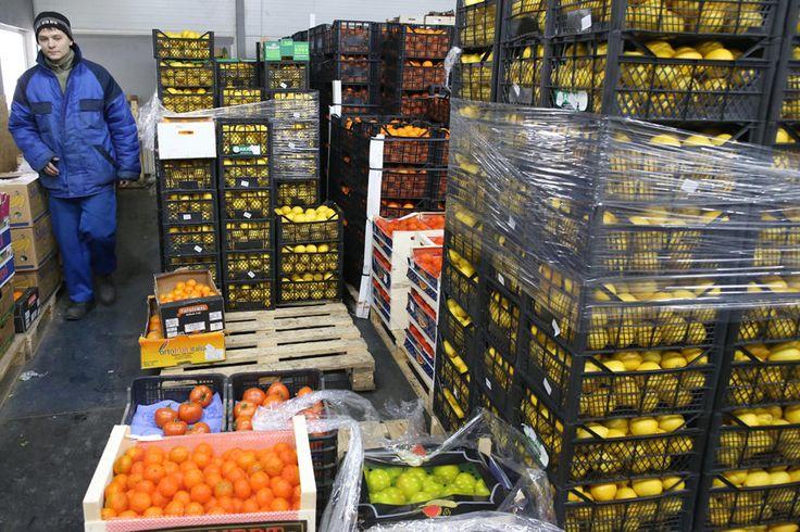 Турецкие фрукты возвращаются на прилавки российских магазинов Кабмин снял эмбарго с некоторых продуктов - Российский Диалог
