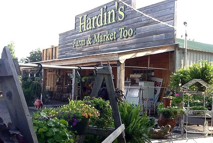 50 Things to Do in 50 states: Cheese Dips, Farmers Marketing, Arkansashardin Farms, Fried Corn, Farmers' Market, Sweet Corn, Comfort Foods, Fries Corn, Chicken Spaghetti