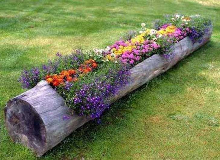 Utiliza un gran tronco como maceta para tus plantas de jardín