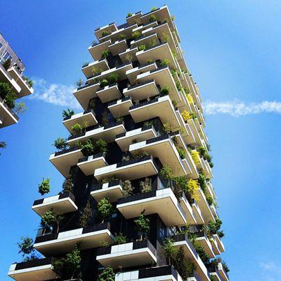 Bosco verticale,Milano.Due torri residenziali disegnate da Boeri Studio, le cui terrazze ospitano rispettivamente 900 specie arboree. A chi di voi piacerebbe ammirare lo skyline milanese da lassù?