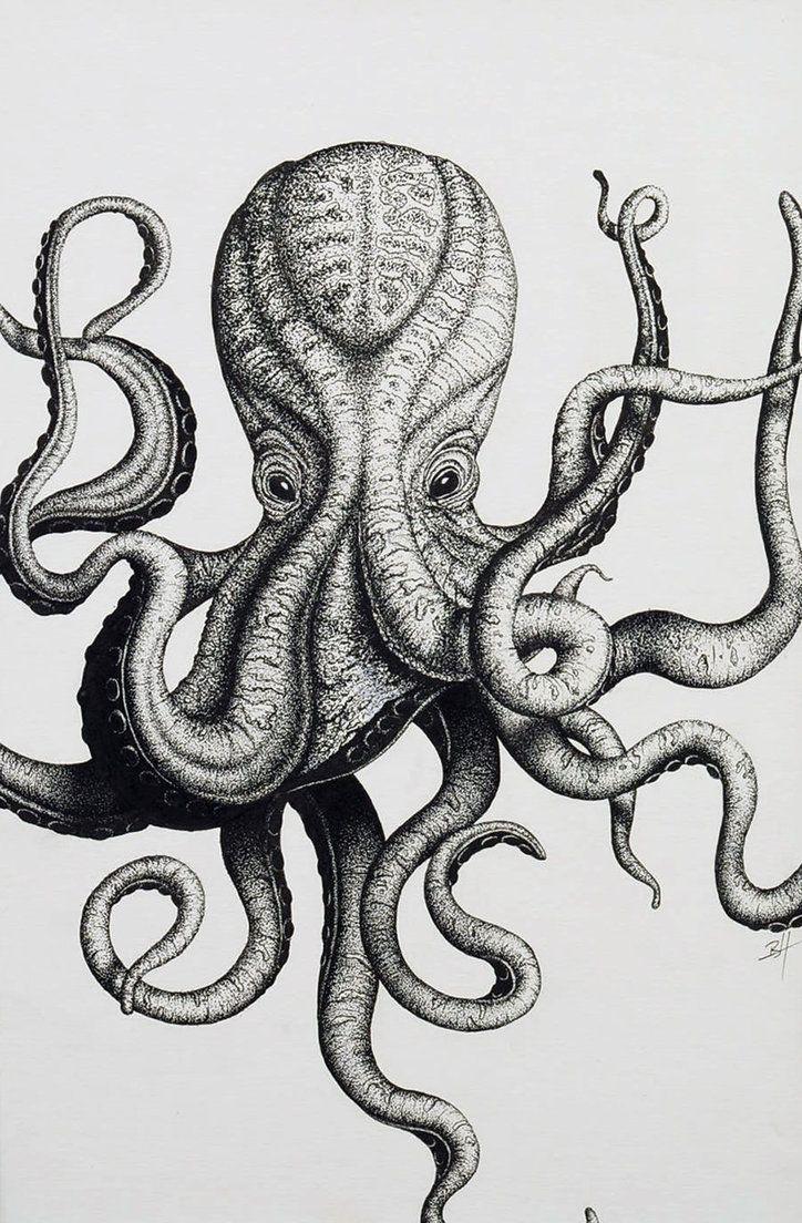 octopus_initials_by_art_brandonhubschman-d45nnm9.jpg (724×1104)