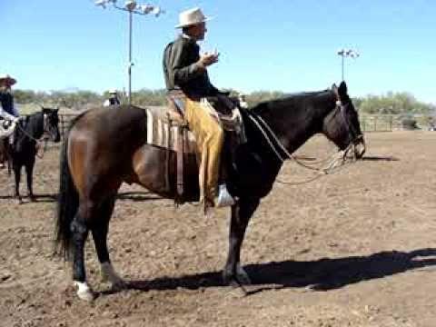 Buck Brannaman Clinic, Best Ride He's Seen