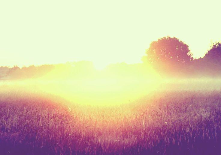 "Title: ""Sunrise in Summer"""
