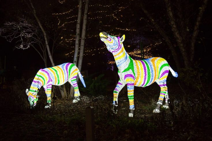 ZooLights. Photo: Julia Fuller / Lincoln Park Zoo http://www.chicagonow.com/show-me-chicago/2017/10/chicago-calendar-of-holiday-and-winter-events-2017/