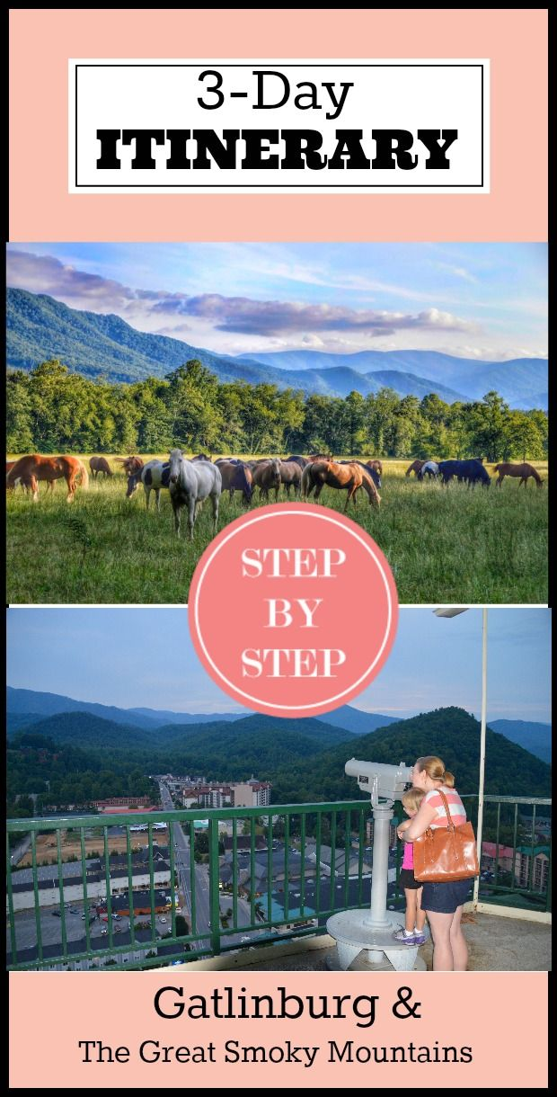 Family fun abounds in Gatlinburg and The Great Smoky Mountains National Park. From the exciting to the serene, we've got an itinerary with options to please any family. #Gatlinburg #Travel #Familytravel #kids @travelmindset @gatlinburgtn http://lorimacbrown.com/travel-with-kids-atlanta-to-gatlinburg/