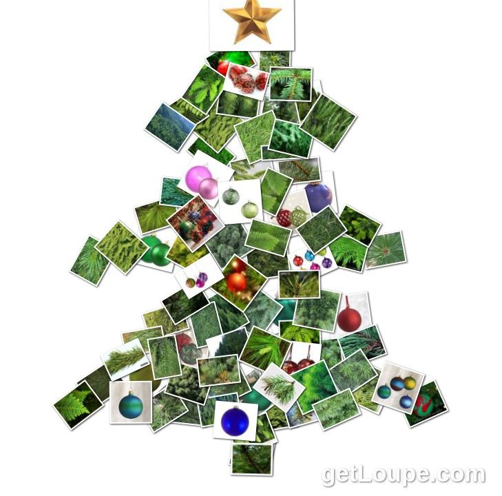 77 best images about eco christmas on pinterest christmas trees homemade and advent calendar. Black Bedroom Furniture Sets. Home Design Ideas