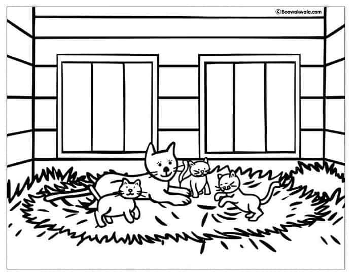 House Cat Coloring Pages Cat Coloring Page Bear Coloring Pages Coloring Pages