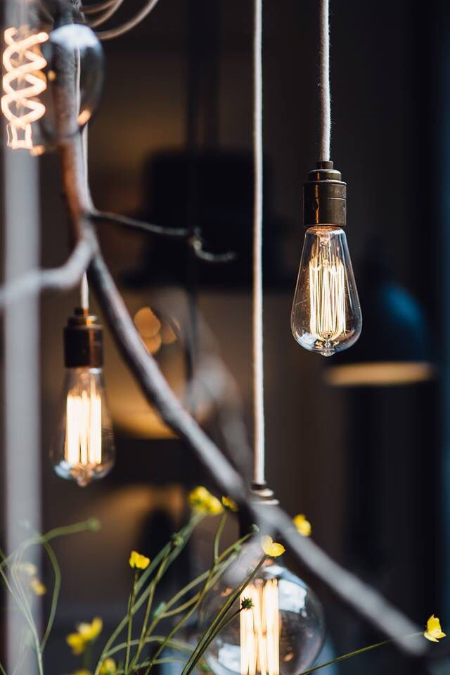 Bulb pendants & filament bulbs | Olive & the Fox