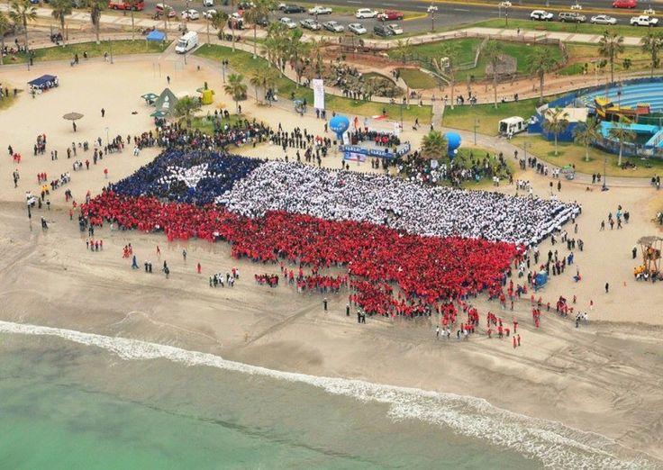 Bandera humana, Iquique, 2010 Bandera humana gigante, realizada el año 2010 en la Playa Cavancha de Iquique con motivo del Bicentenario de Chile, donde participaron más de 12.000 personas.  Foto: Bicentenario Chile (Flickr).   - EnterrenoEnterreno