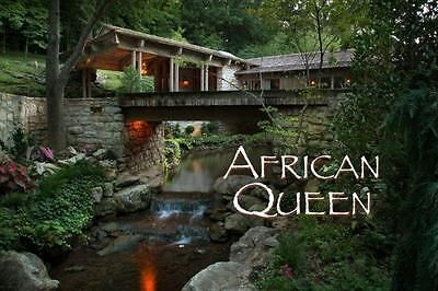 The-African-Queen-An-INCREDIBLE-10-Year-Journey-OUT-OF-THIS-WORLD