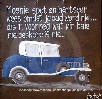 mooi afrikaans - Google Search                                                                                                                                                                                 More