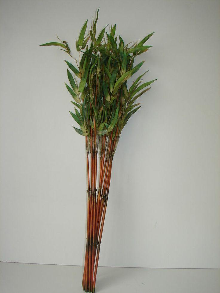 Die besten 25+ Bambusstäbe Ideen auf Pinterest Erbsen pflanzen - bambus im wohnzimmer