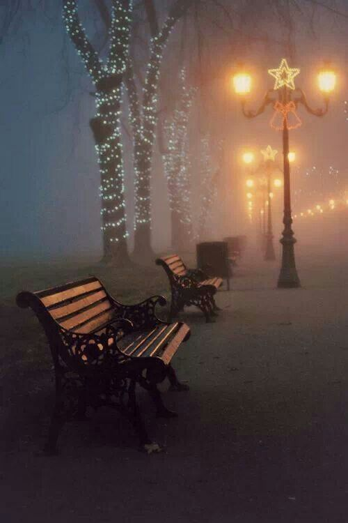 101 Best Photography Park Benches Images On Pinterest
