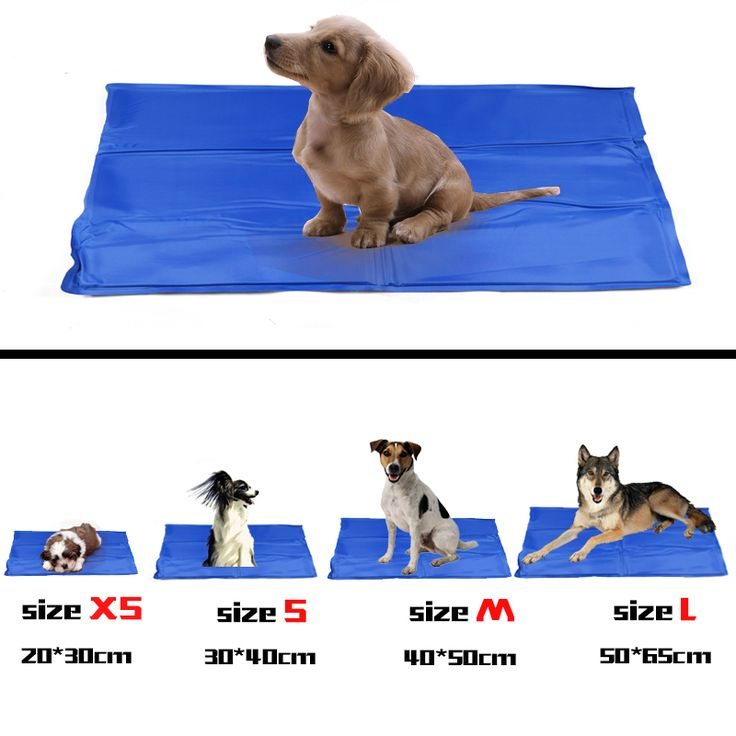 New Dog Cool Mat Pet Cooling Mat Soft Gel Comfort For Dogs Durable Non-Toxic & Easy To Clean Pet Love Product 4 Sizes Included
