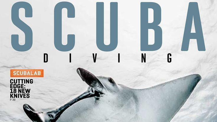 Introducing the New-Look Scuba Diving Magazine  News  Take a sneak peek at our March 2018 issue which features a new look and features  Check out the new-look Scuba Diving Magazine with a sneak peek of its March 2018 issue which features a new logo and design.  If you like our pins please follow us: http://ift.tt/2qGg6EH #ScubaDivingMagazine