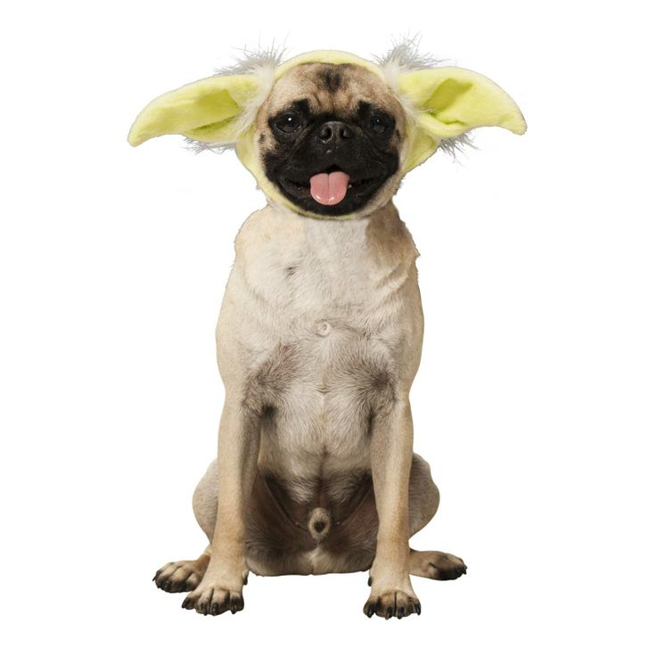 STAR WARS Yoda Dog Headband: