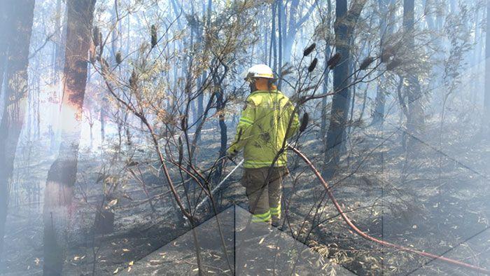 Blue Mountains Bushfire - why it struck so early.