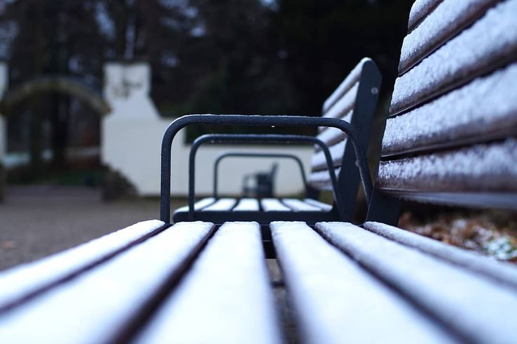 Wiederholung . #aachen #hangeweiher #bench #patterns #repetition #bokeh #outdoors #snow #cold #frozen #hiking #travel #wanderlust #adventure #photographer #potd #picoftheday #photoblog #photooftheday #awesome #art #sonyalpha #sonyalpha5000 #oldlens #canonfd50mm #vintage