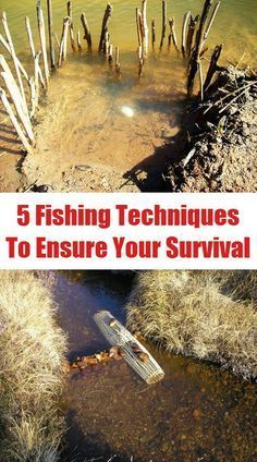 5 Fishing Techniques To Ensure Your Survival | http://www.ecosnippets.com/prepping/5-fishing-techniques-to-ensure-your-survival/