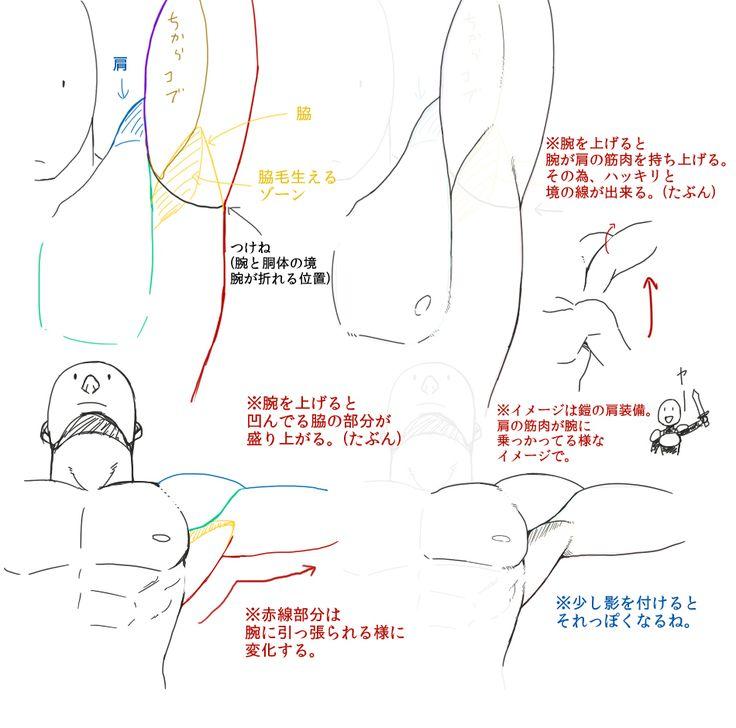なんちゃって筋肉の描き方【自分用】 [11]