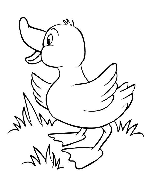 40 Duck Shape Templates Crafts Colouring Pages Zoo Animal