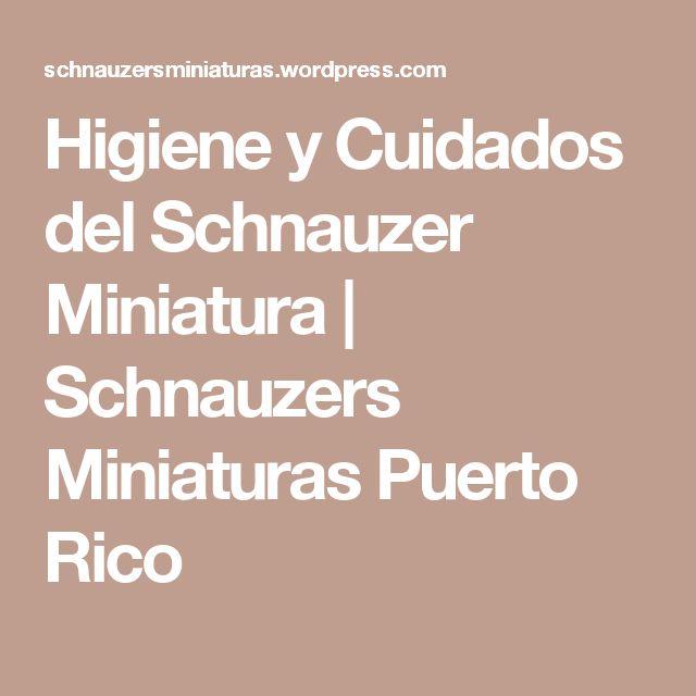 Higiene y Cuidados del Schnauzer Miniatura | Schnauzers Miniaturas Puerto Rico