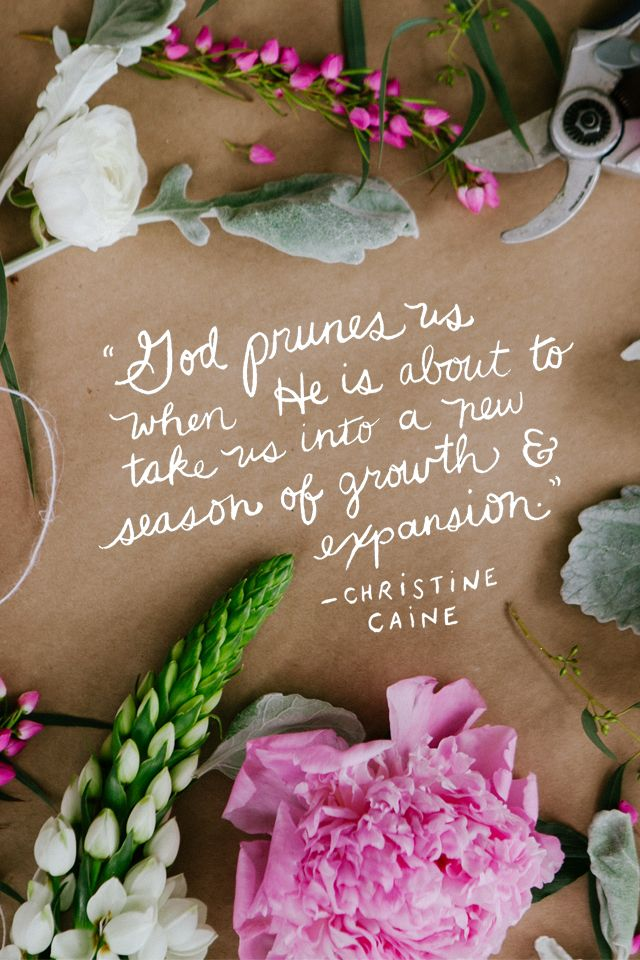 God prunes us when he is about to take us into a new season of growth & expansion - christine caine
