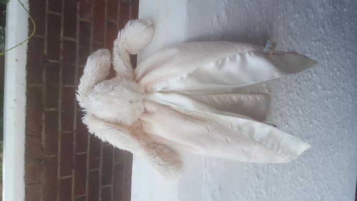 Found on 30 Aug. 2016 @ Constantine Road Colchester essex. Little bunny found…
