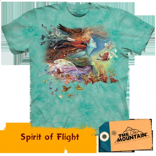 Spirit of Flight