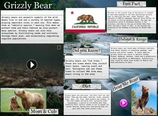 The grizzly bear is any North American morphological form or subspecies of brown bear, including the mainland grizzly, Kodiak bear, peninsular grizzly, and the recently extinct California grizzly and Mexican grizzly bear. #glogster #glogpedia #grizzlybear