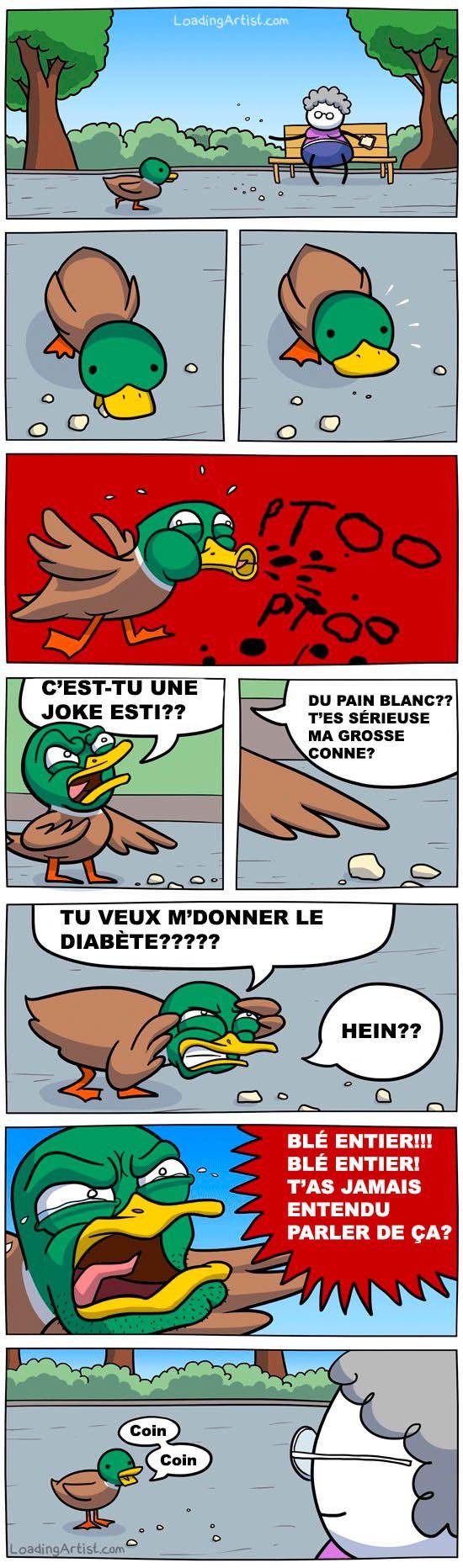 Quand les canards se révolte.