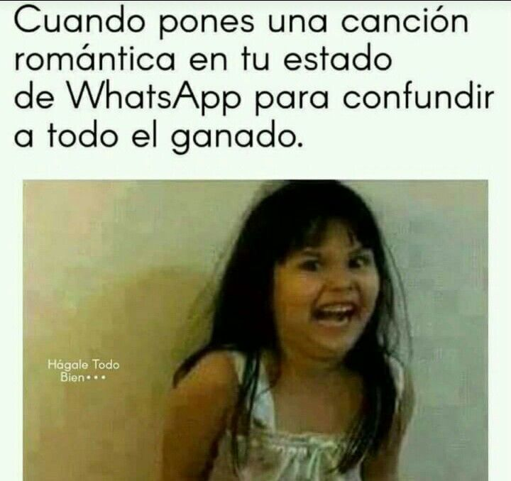 Tu Estado De Whatsapp Memes Imagenes De Risa Memes Divertidos