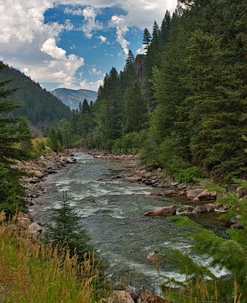 Gallatin River in Montana,,,,rented a cabin there and it was wonderful.  Can't fly fish worth a crap but had a blast trying to:)