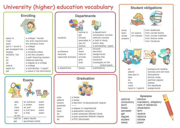 University (higher) education vocabulary