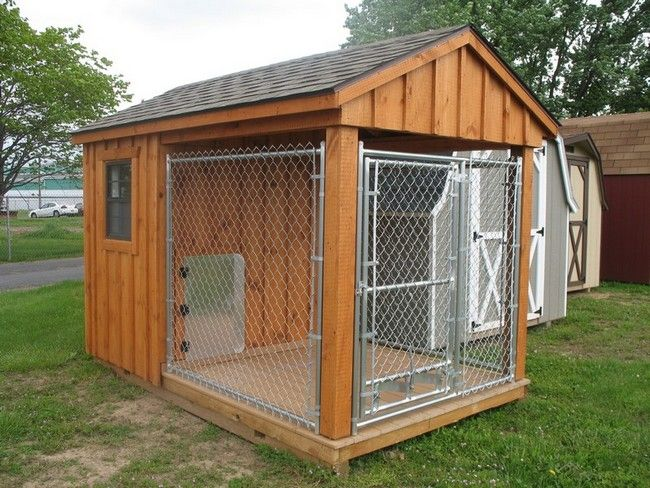 Portable Pet Enclosures Dog