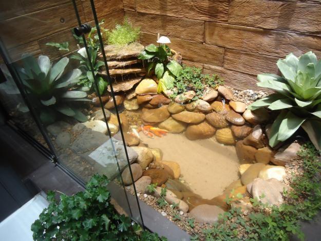 pequeno lago com cascata